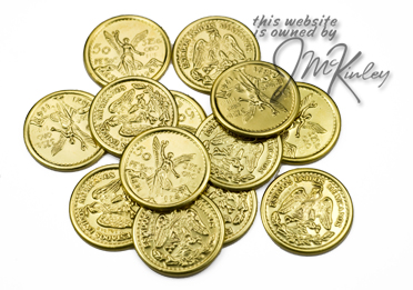 Wedding Arras Thirteen 14k Gold Plated Arras Coins centenario 13 coins say 50 PESOS 375